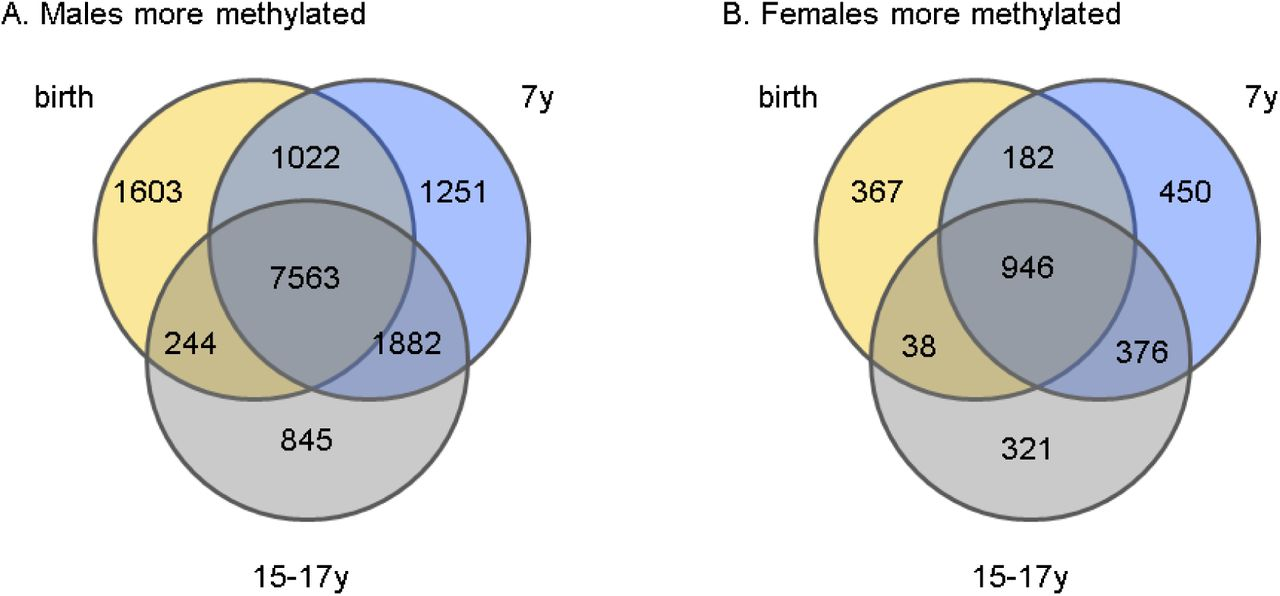 Sex-associated autosomal DNA methylation differences are