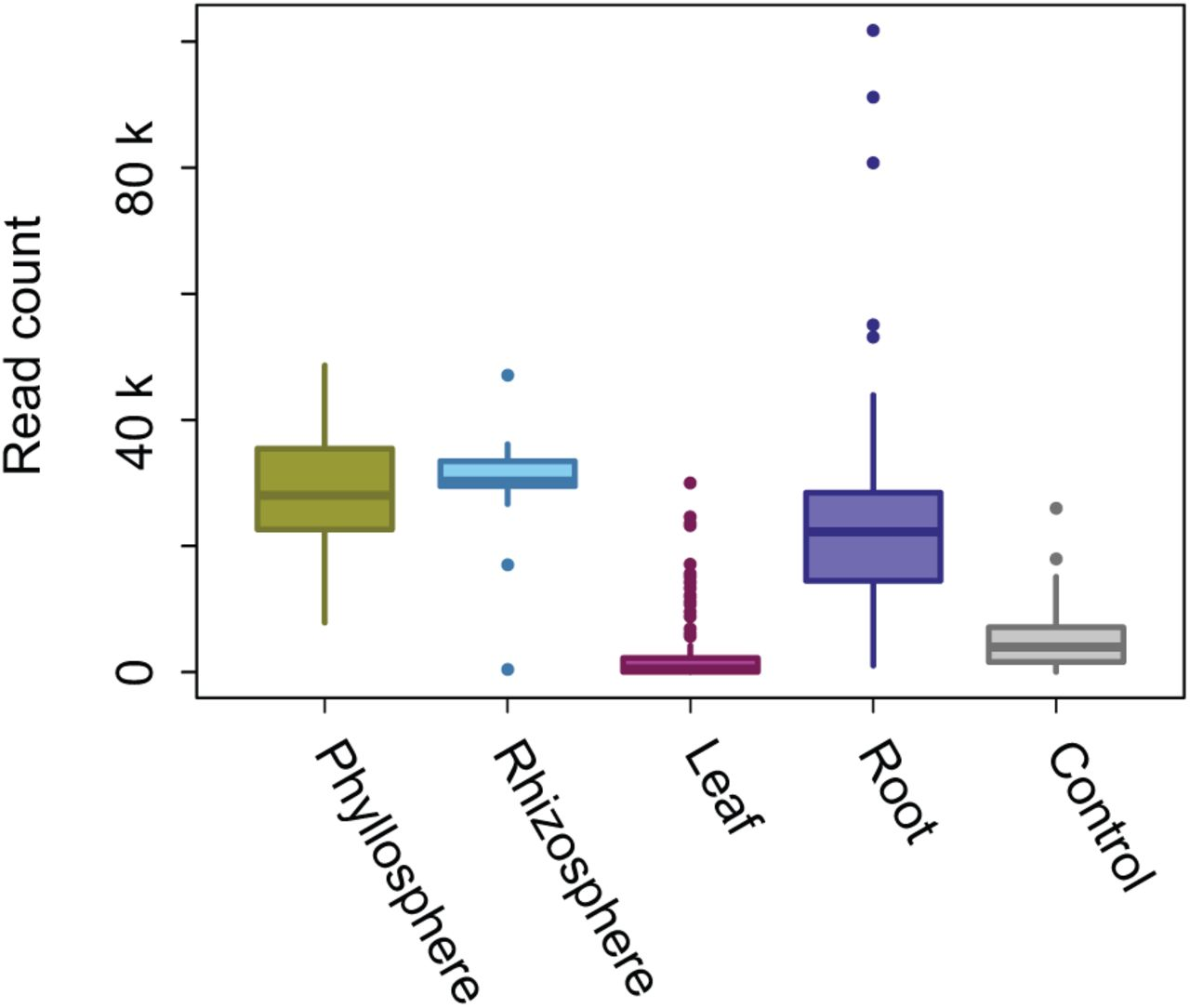 Escape from bacterial diversity: potential enemy release in