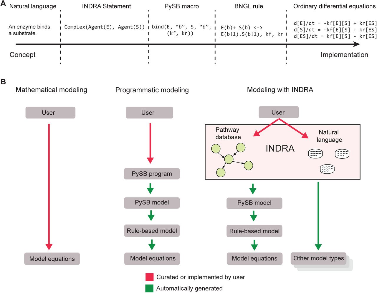 From word models to executable models of signaling networks