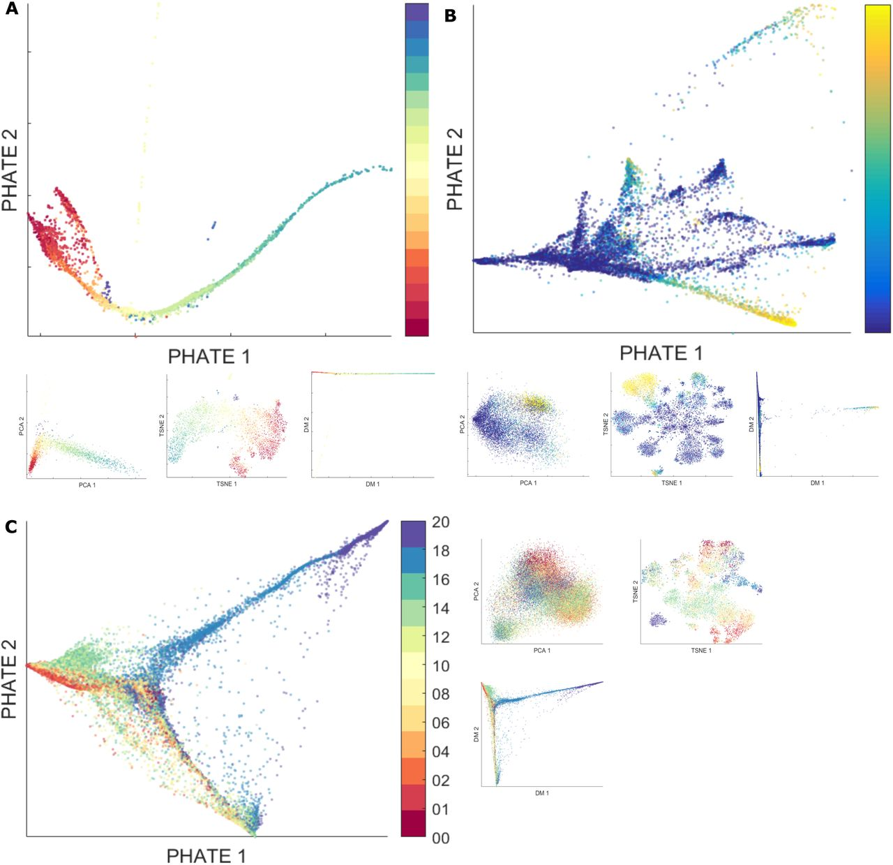 PHATE: A Dimensionality Reduction Method for Visualizing Trajectory ...