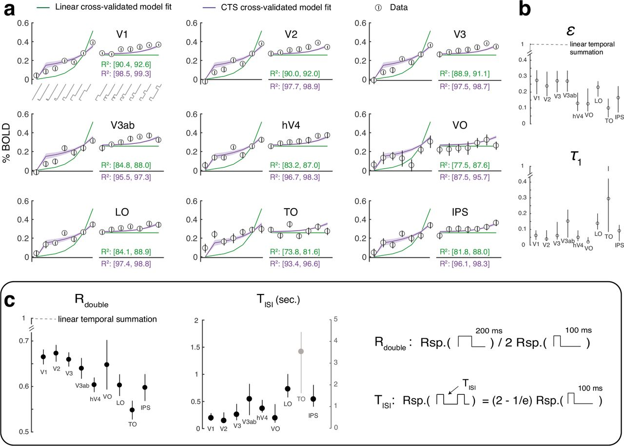 Modeling Systematic Differences In Temporal Summation And Adaptation