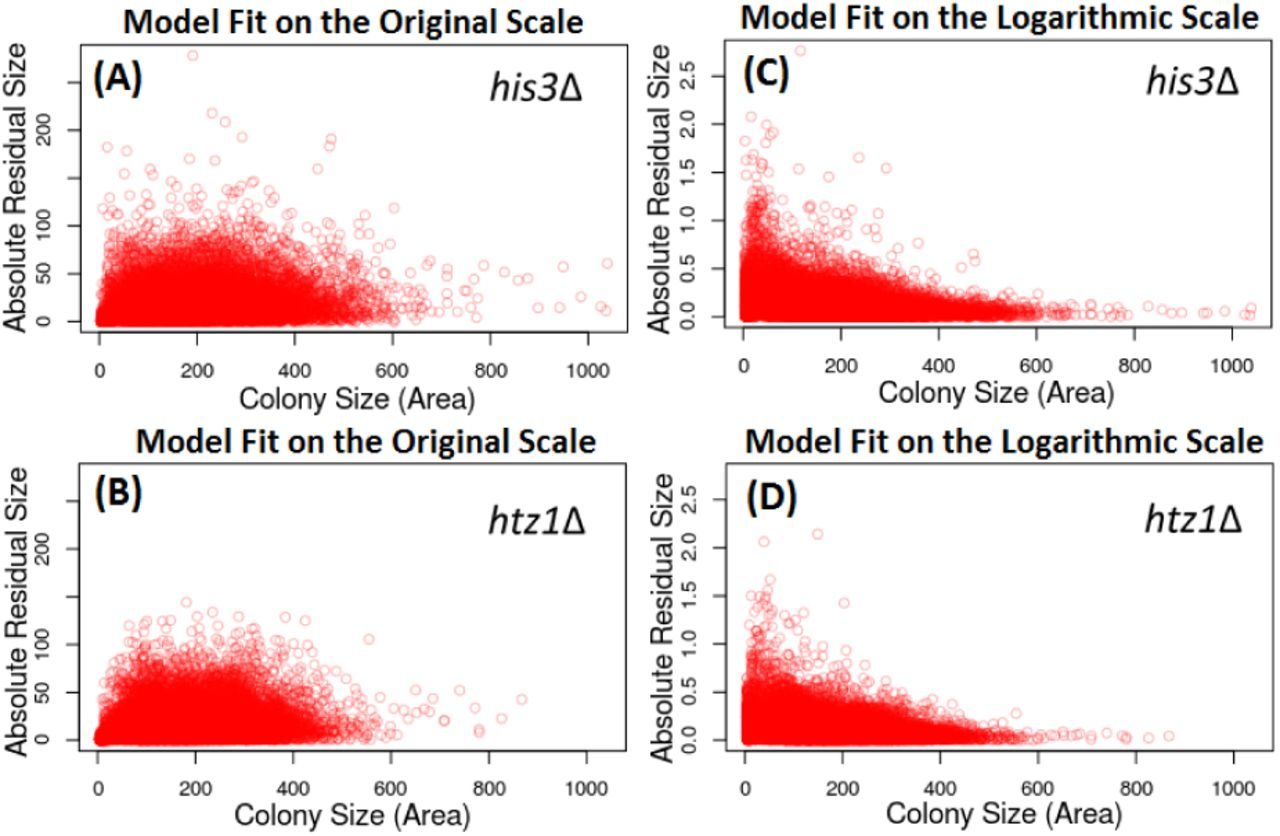 Modeling the consequences of heterogeneity in microbial population
