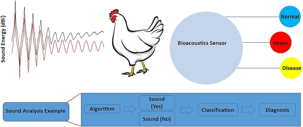 Recent Advancement in Biosensors Technology for Animal and