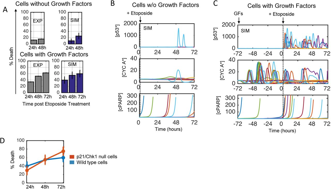 An Integrated Mechanistic Model of Pan-Cancer Driver
