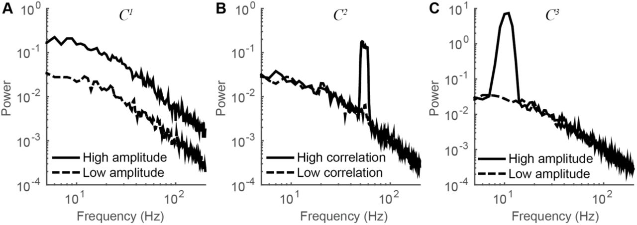 Neuronal synchrony and the relation between the BOLD