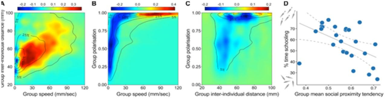 Consistent individual differences drive collective behaviour