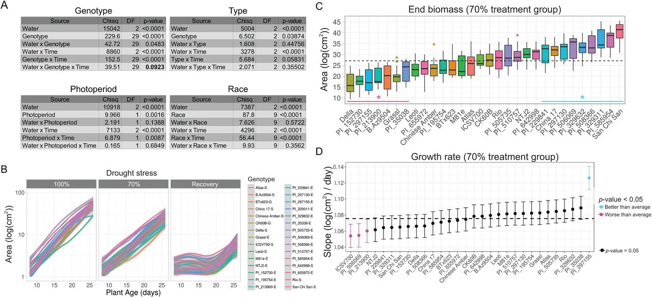 High-throughput profiling identifies resource use efficient and