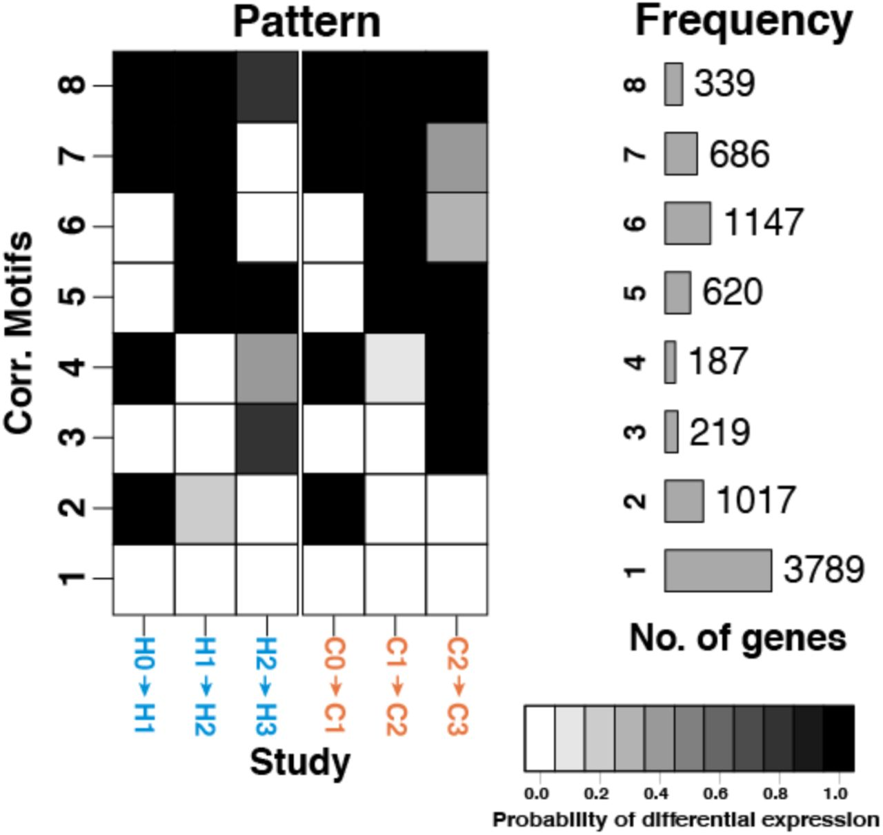 A comparative study of endoderm differentiation in humans