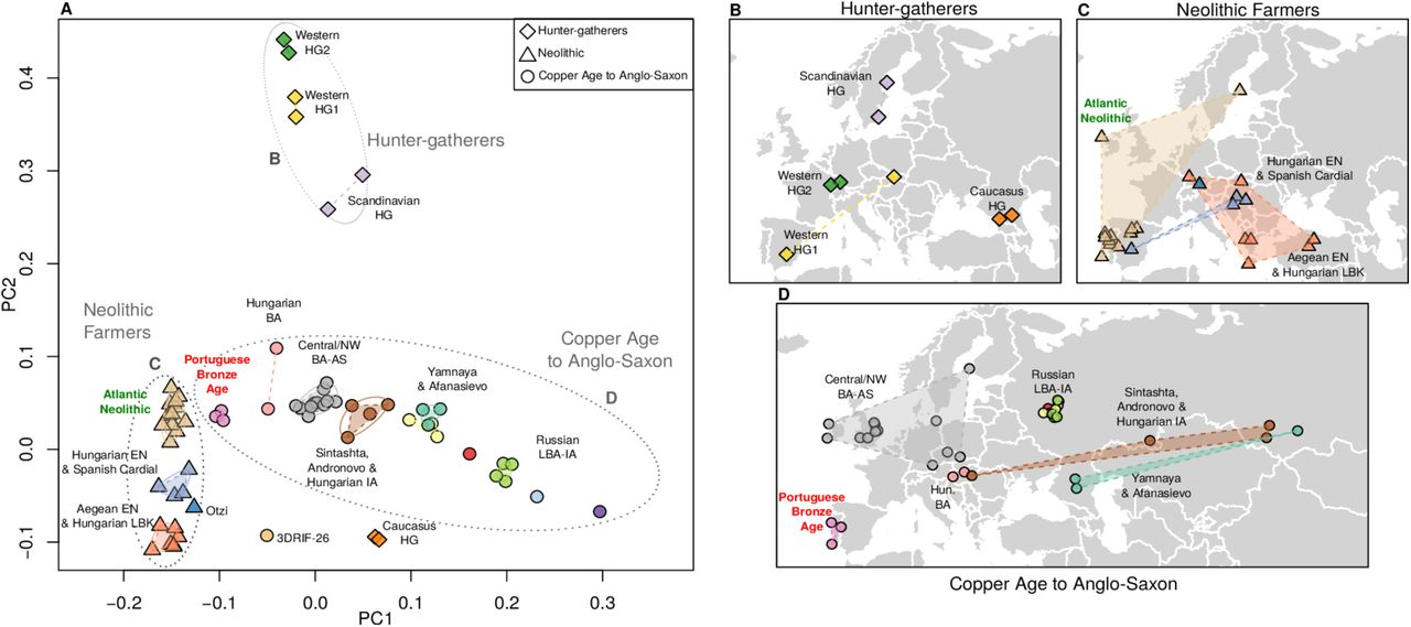 The population genomics of archaeological transition in west