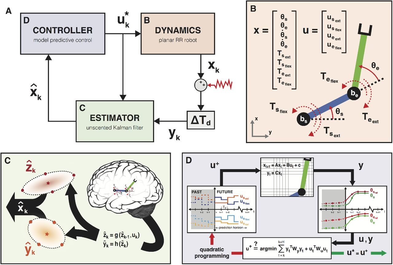 Simulating the impact of sensorimotor deficits on reaching
