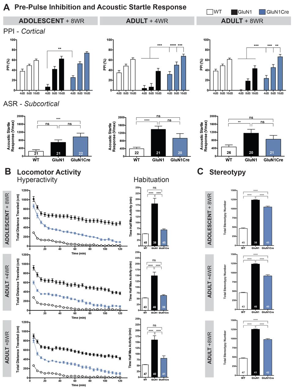 Consequences of NMDA receptor deficiency can be rescued in