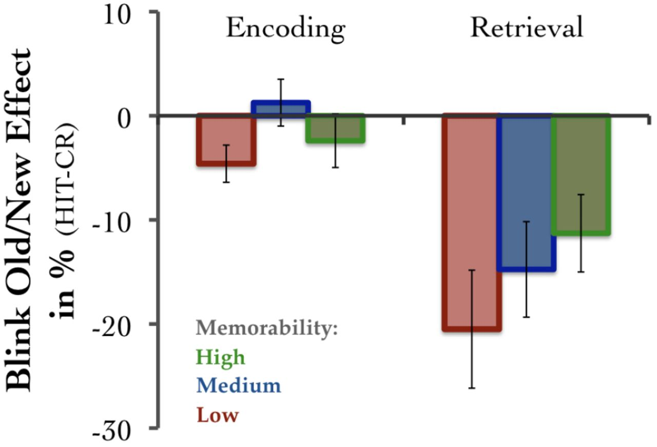 Image Memorability in the Eye of the Beholder: Tracking the Decay of