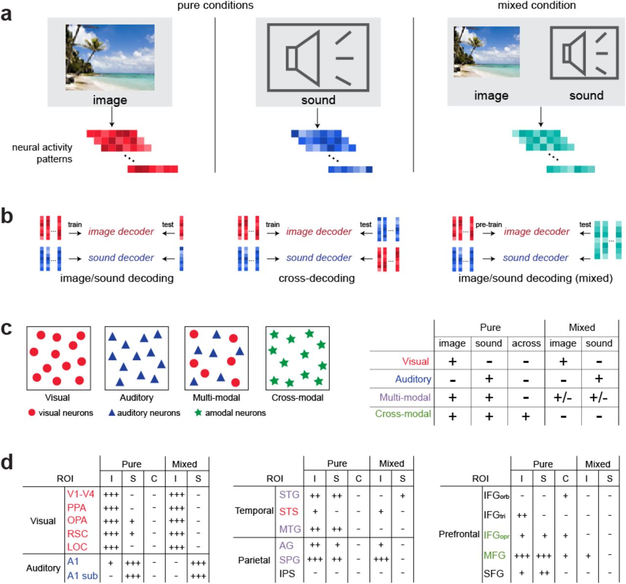 Modality-Independent Coding Of Concepts In Prefrontal Cortex   bioRxiv