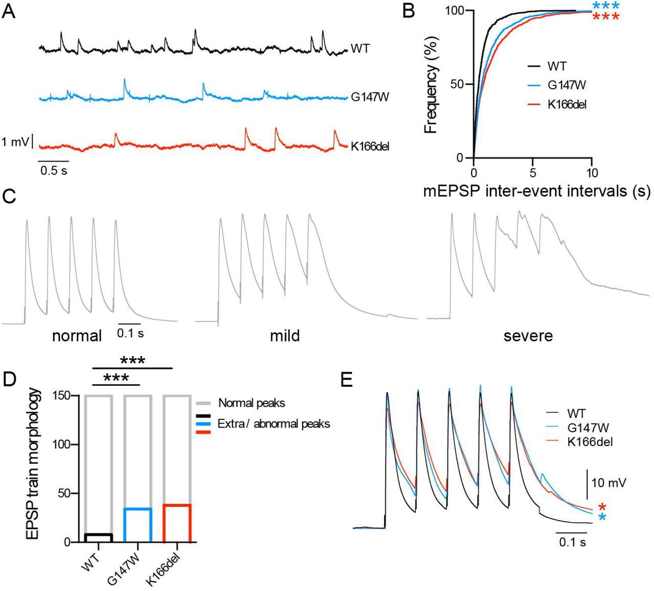 Mutations in Membrin/GOSR2 reveal stringent secretory