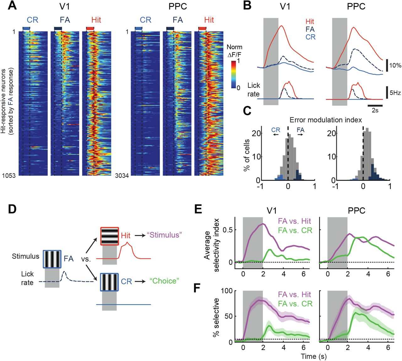 Task-dependent representations of stimulus and choice in mouse