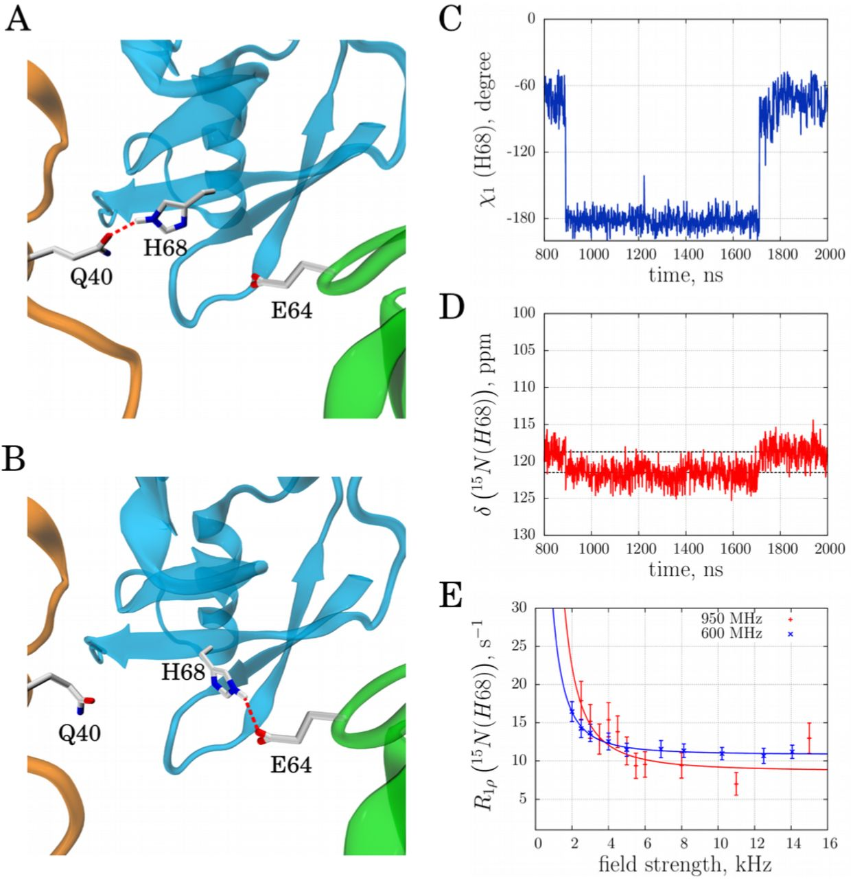 Slow conformational exchange and overall rocking motion in