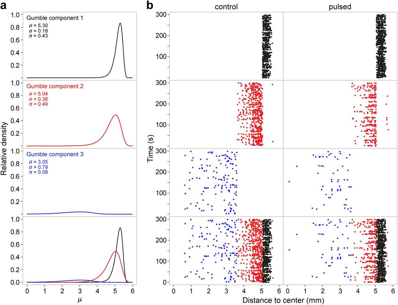 Behavioral decoding of Drosophila locomotion in a circular arena