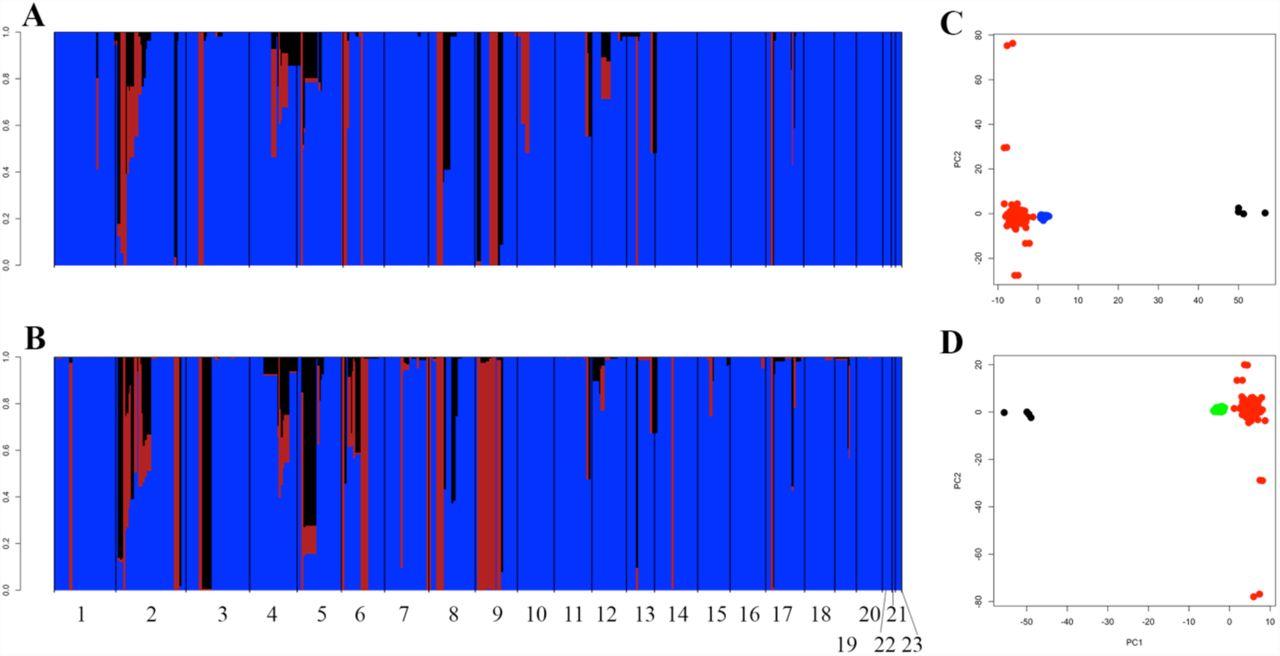 Genome-wide population diversity in Hymenoscyphus fraxineus