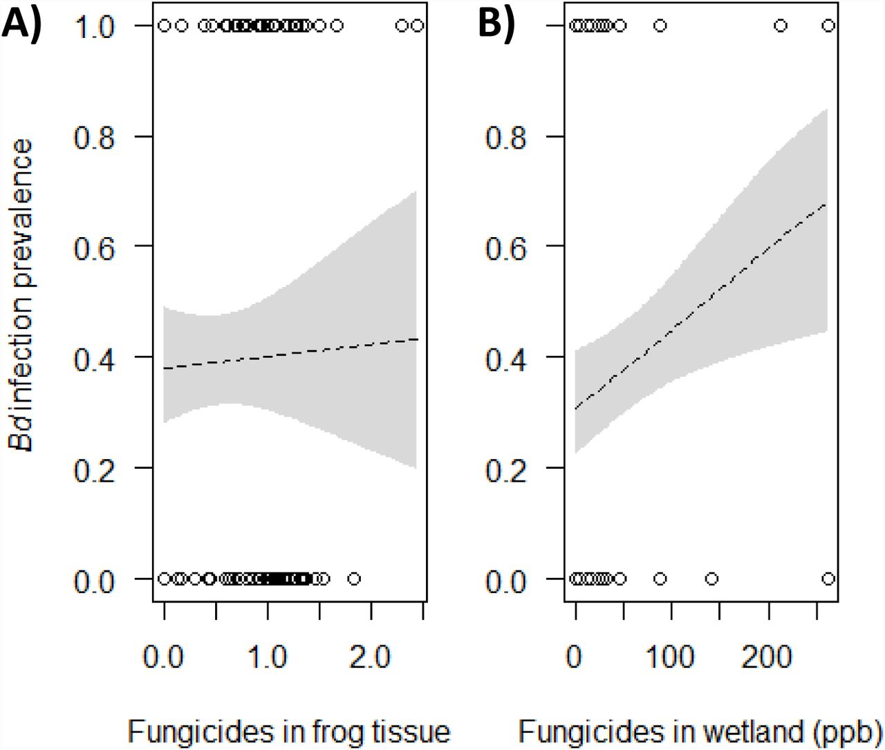 A pesticide paradox: Fungicides indirectly increase fungal