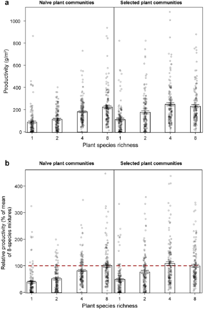 Community evolution increases plant productivity at low