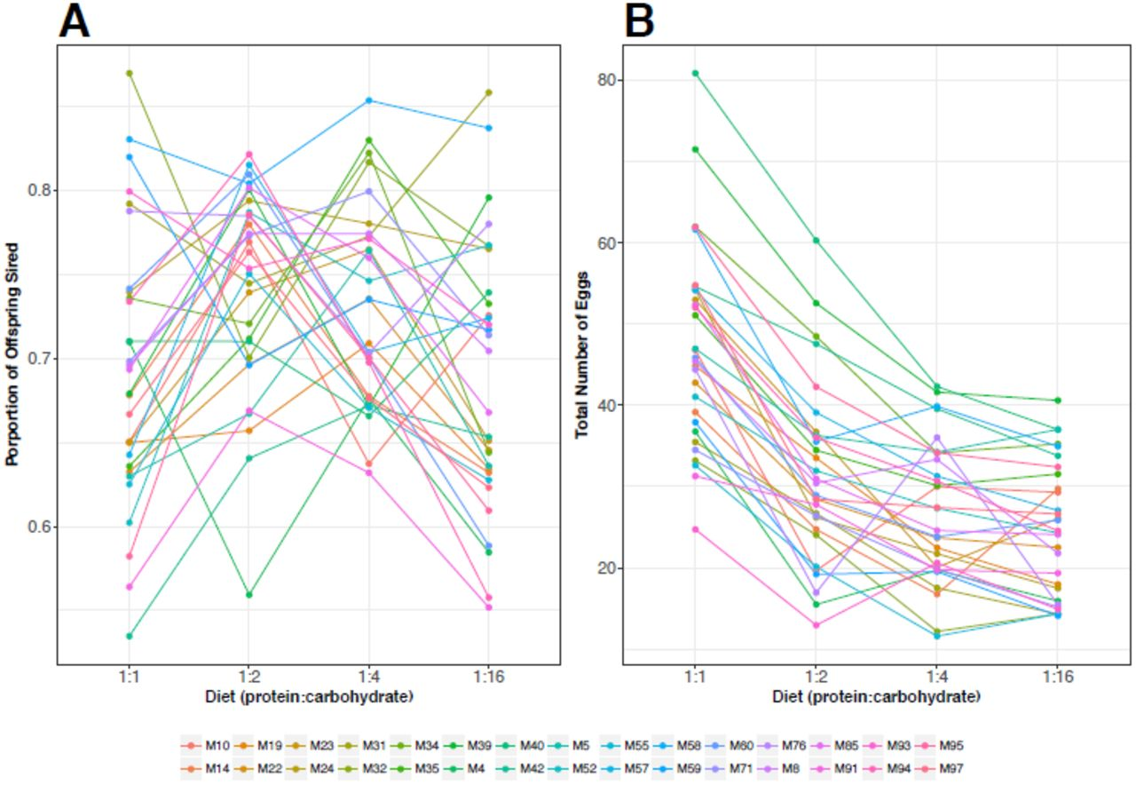 Sex- and genotype-effects on nutrient-dependent fitness landscapes