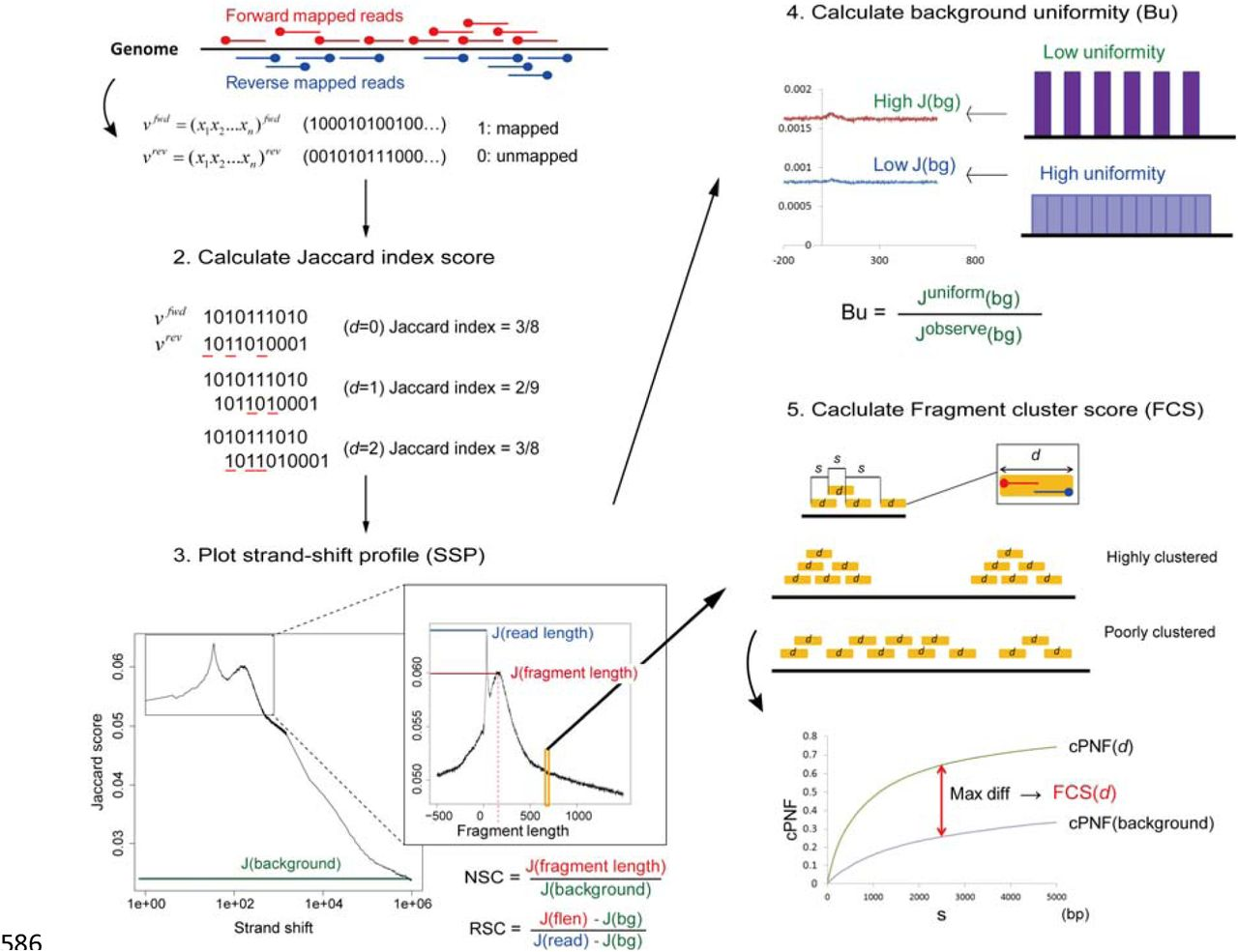 Sensitive and robust assessment of ChIP-seq read