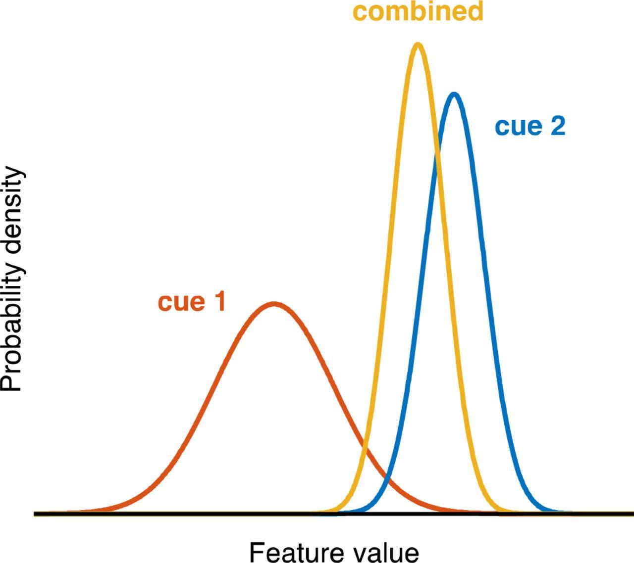 Suboptimality In Perceptual Decision Making Biorxiv