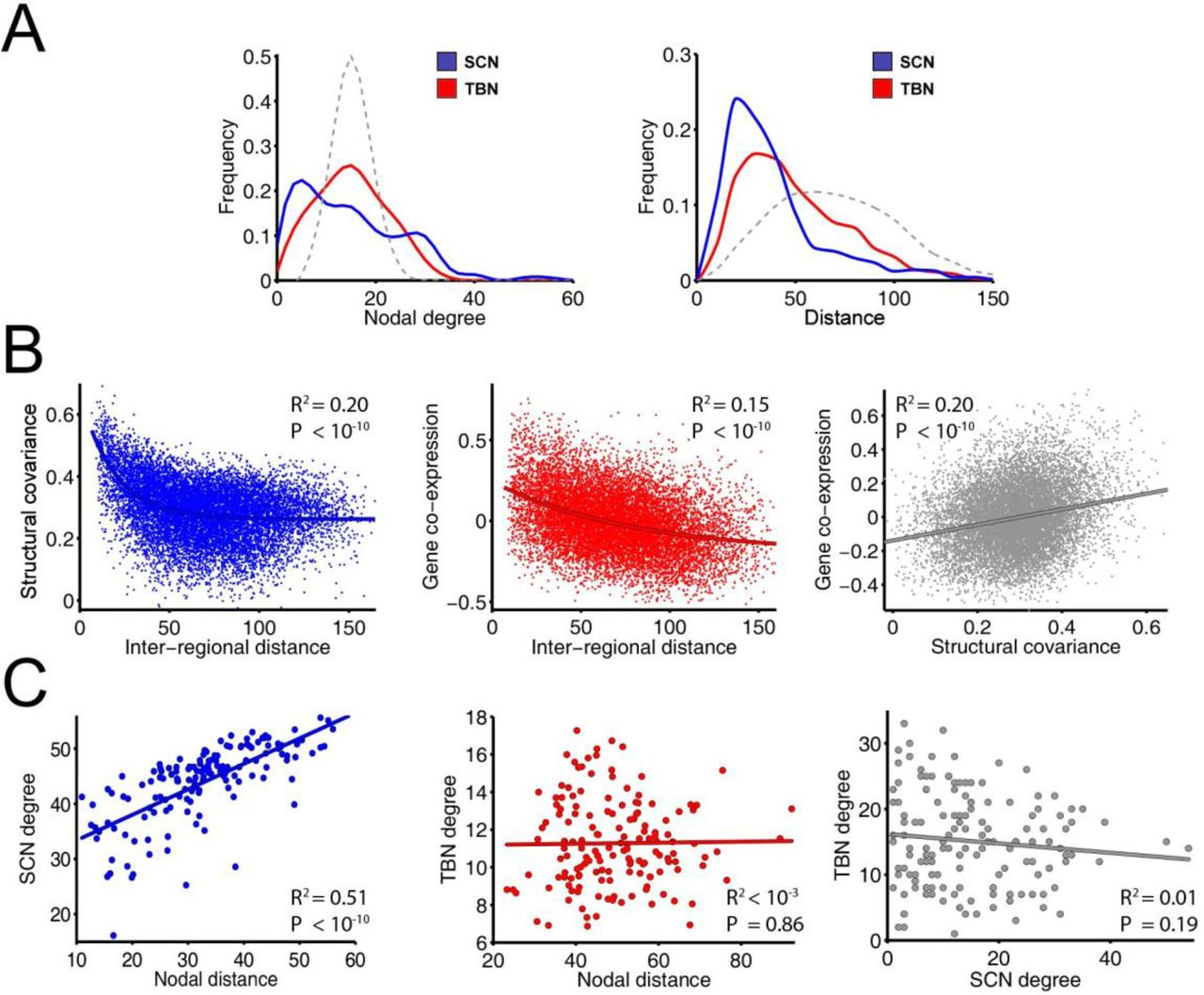 Structural covariance networks are coupled to expression of genes