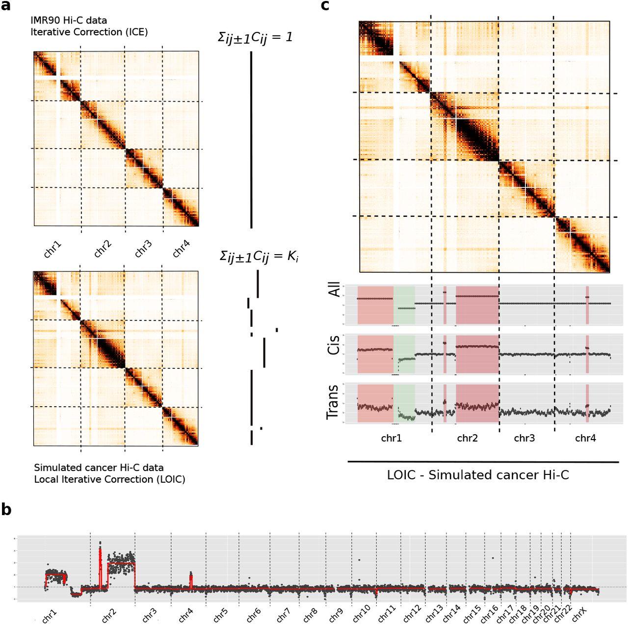 Effective normalization for copy number variation in Hi-C data | bioRxiv