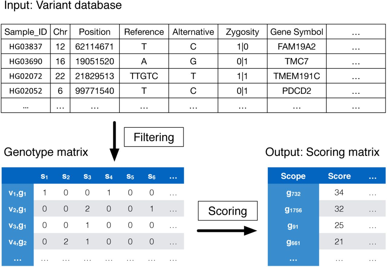 DiGeST: Distributed Computing for Scalable Gene and Variant Ranking