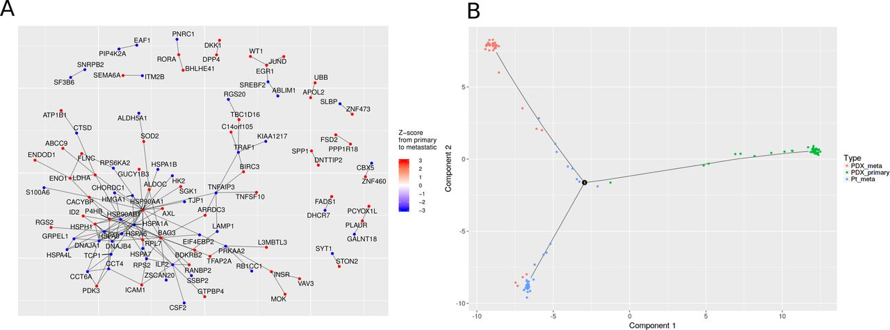 Granatum: a graphical single-cell RNA-Seq analysis pipeline for