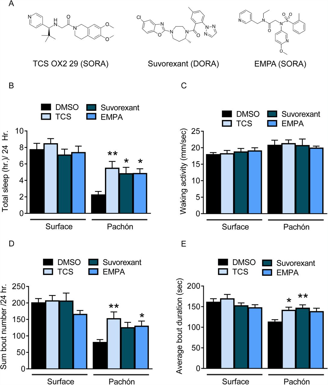 Hypocretin underlies the evolution of sleep loss in the Mexican