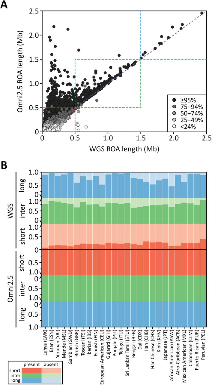 Weighted likelihood inference of genomic autozygosity patterns in