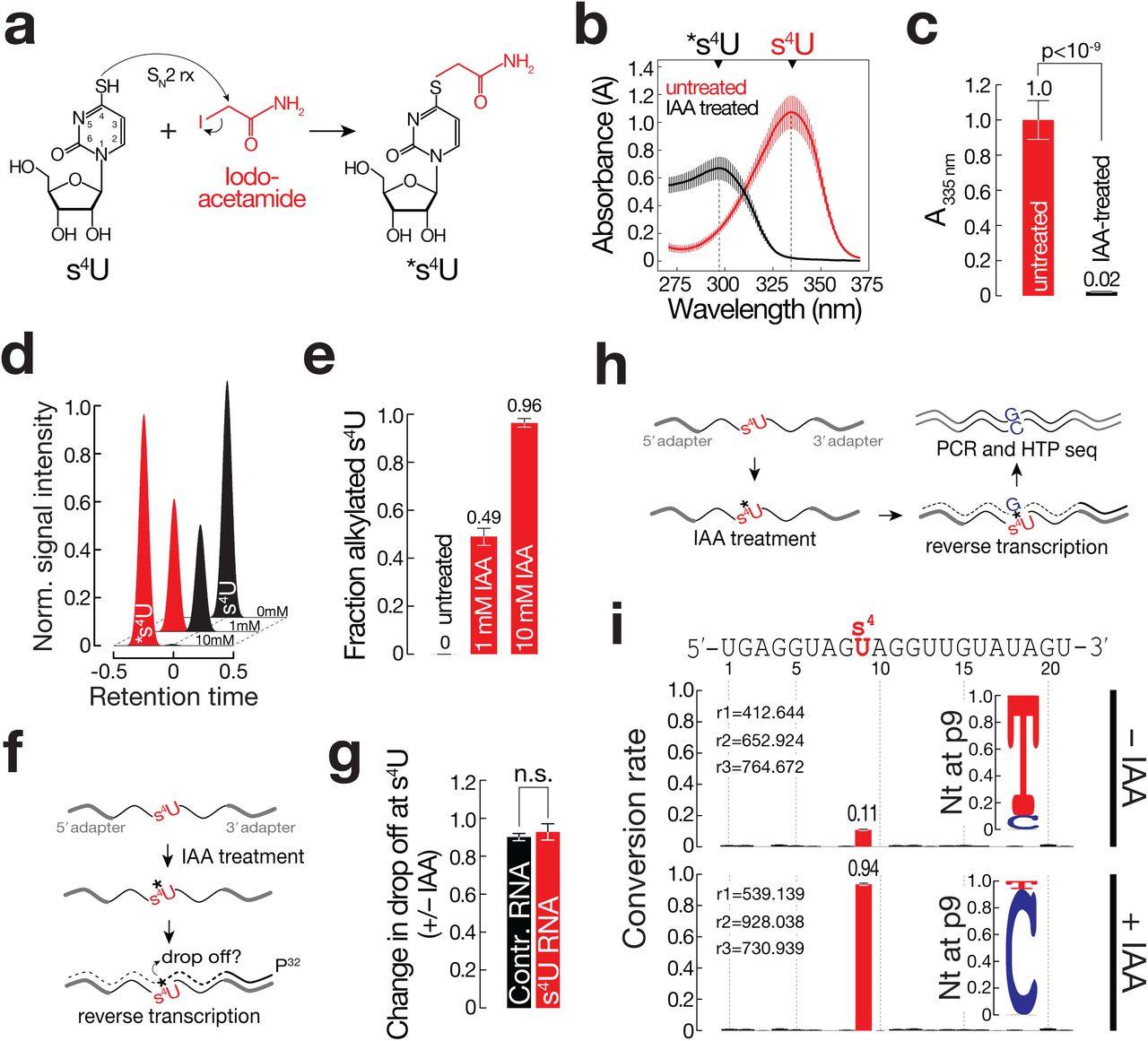 Thiol-linked alkylation for the metabolic sequencing of RNA