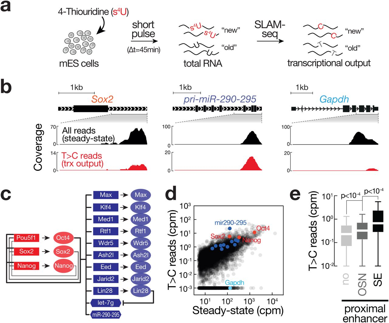 Thiol Linked Alkylation For The Metabolic Sequencing Of Rna Biorxiv