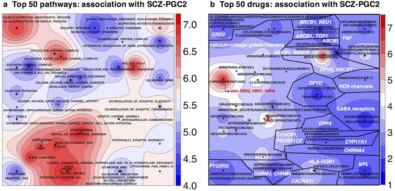Pathways analyses of schizophrenia GWAS focusing on known