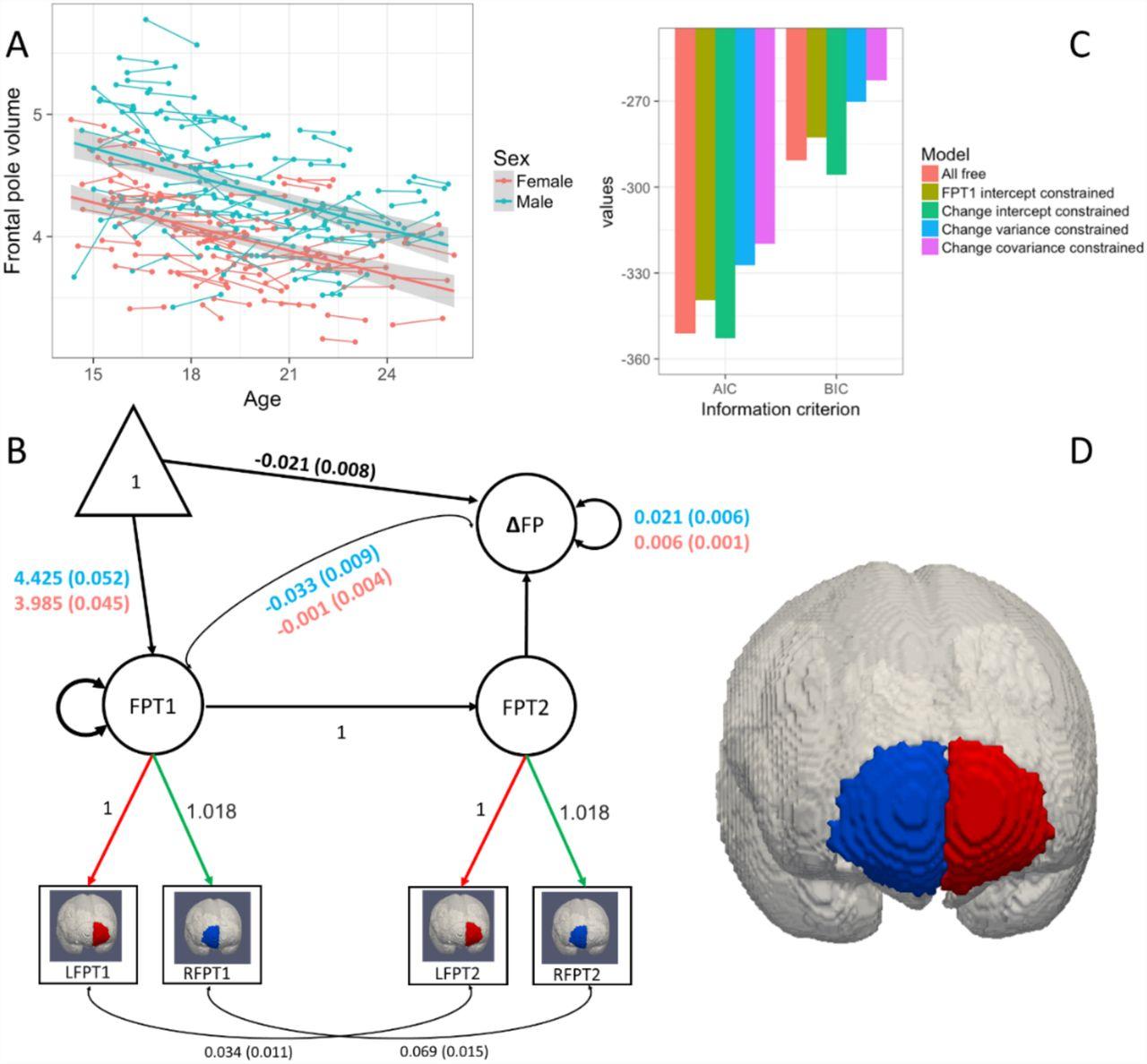 Developmental cognitive neuroscience using Latent Change