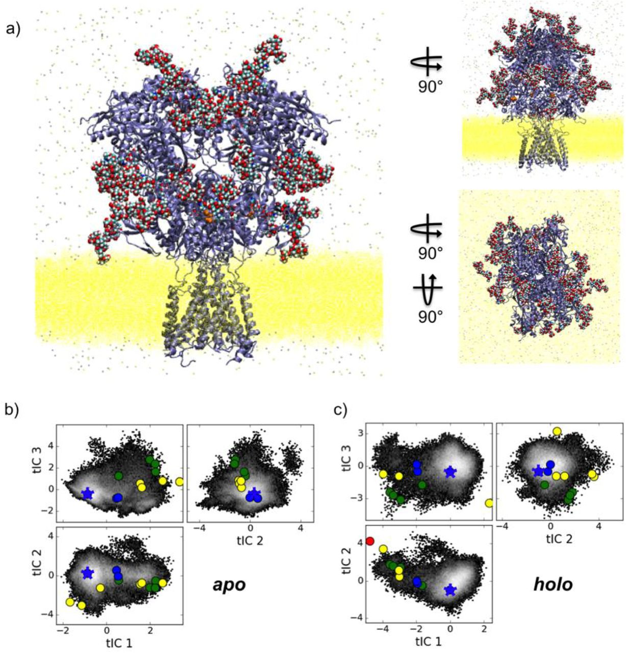 Computer Simulations Predict High Structural Heterogeneity Of Functional State Of Nmda Receptors Biorxiv