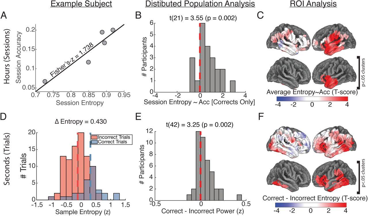 Signal complexity of human intracranial EEG tracks