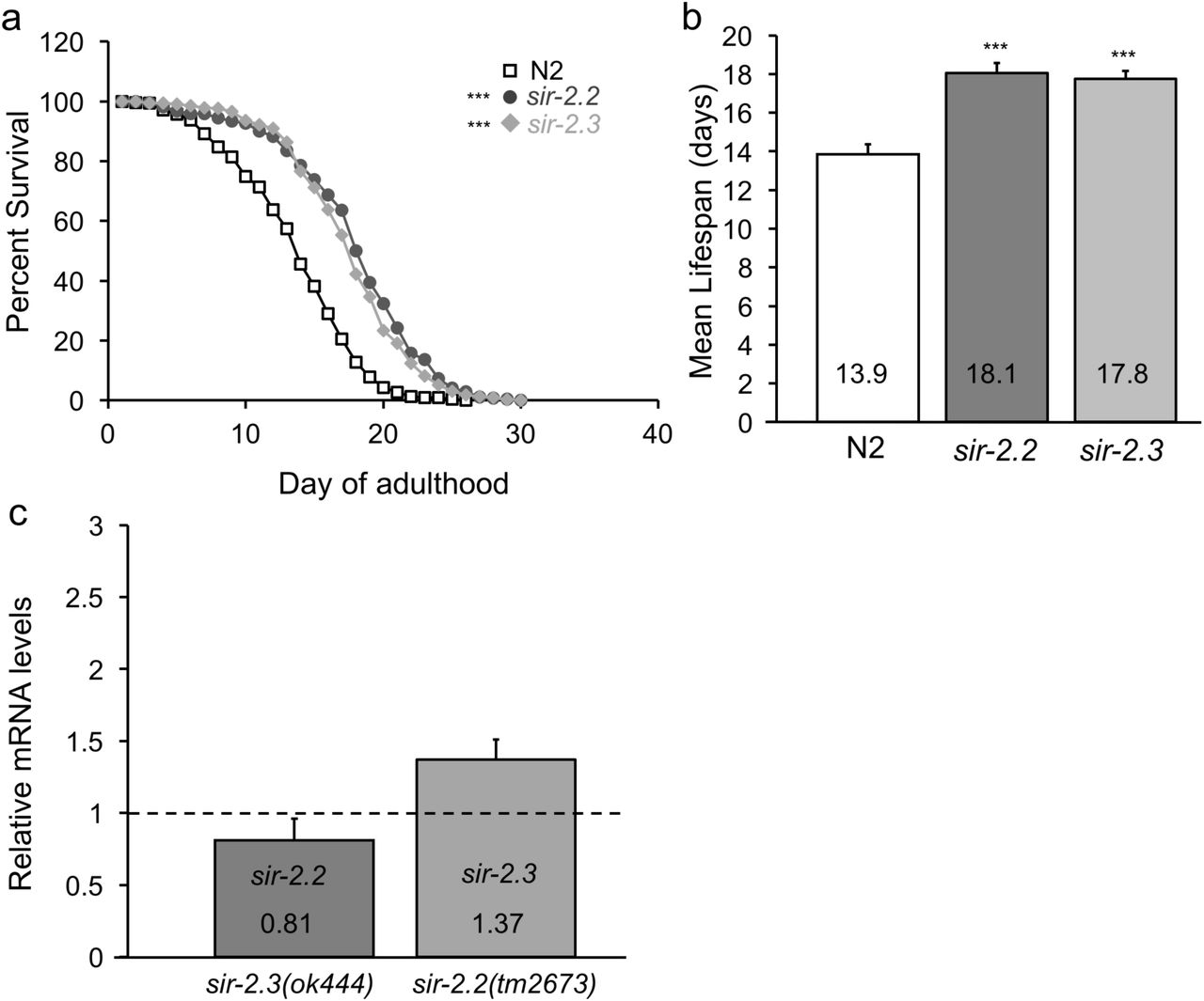 Mitochondrial sirtuins sir-2 2 and sir-2 3 regulate lifespan in C