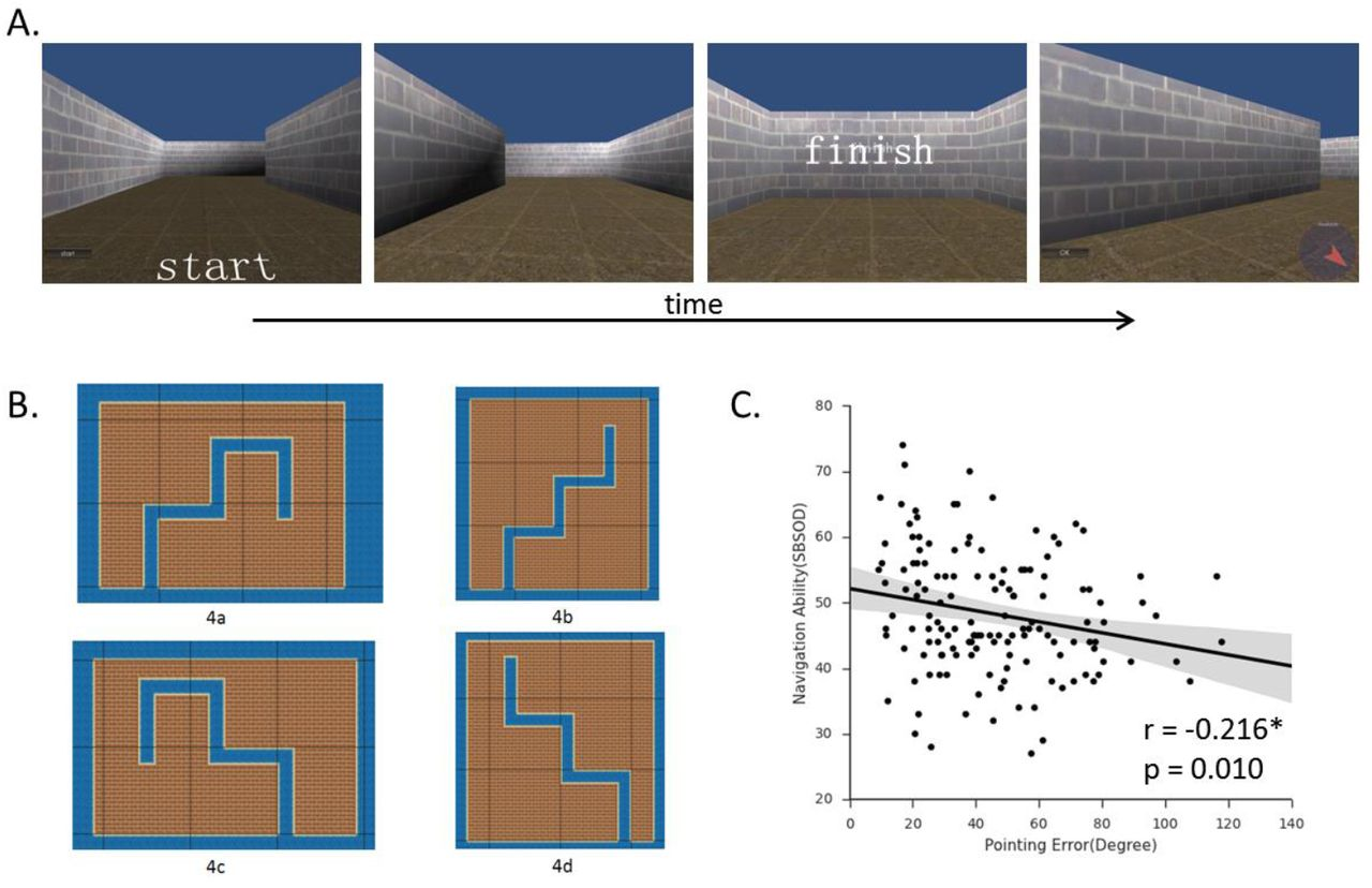 Intrinsic Hippocampal-Caudate Interaction Correlates with