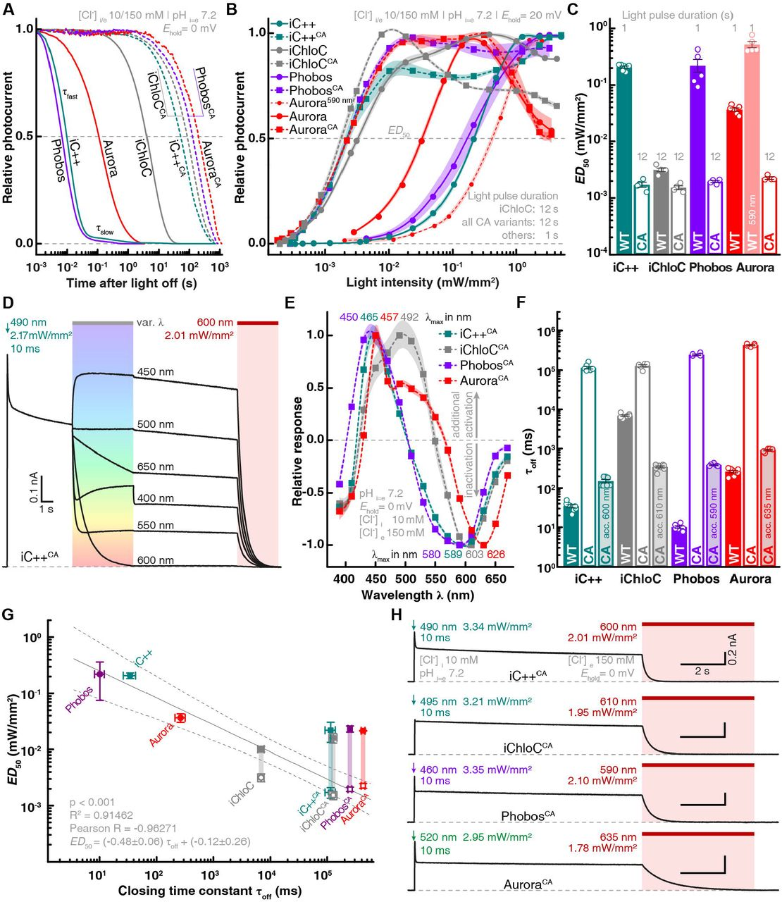 Anion-conducting channelrhodopsins with tuned spectra and modified