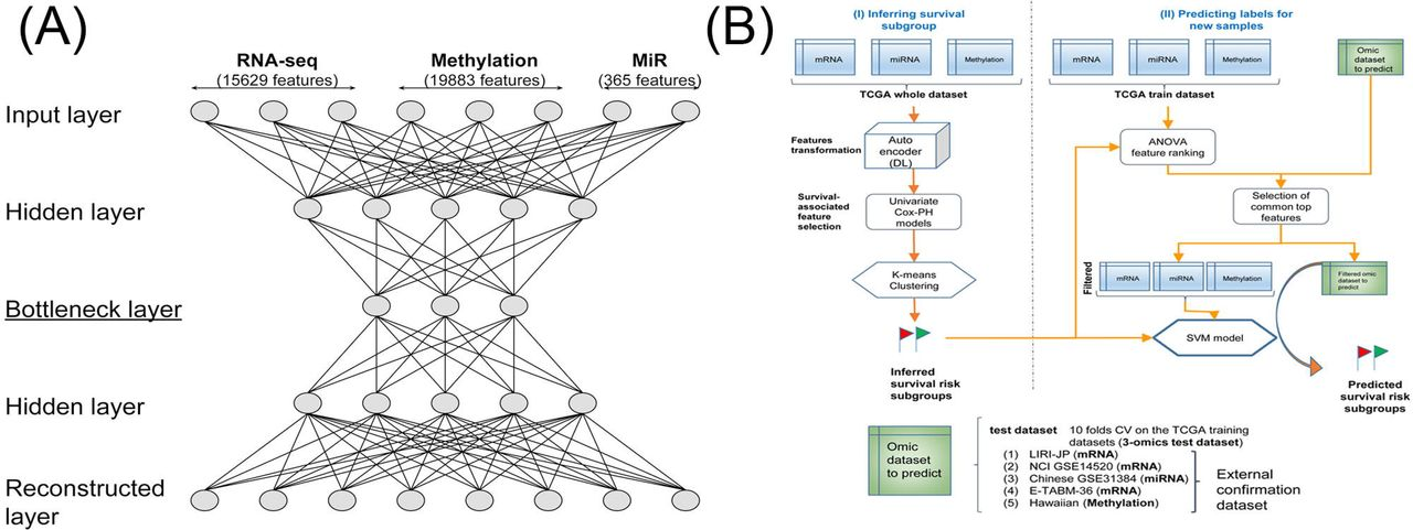 Deep Learning based multi-omics integration robustly predicts