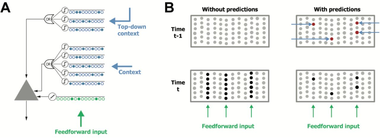 Untangling Sequences: Behavior vs  External Causes | bioRxiv