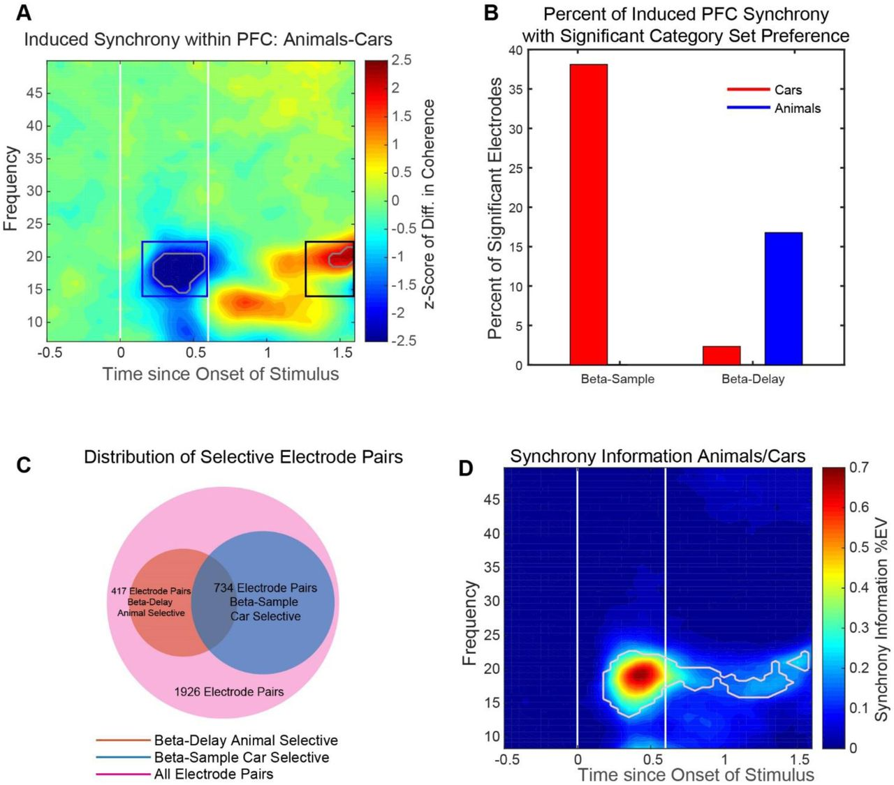 Neuronal rhythms orchestrate cell assembles to distinguish