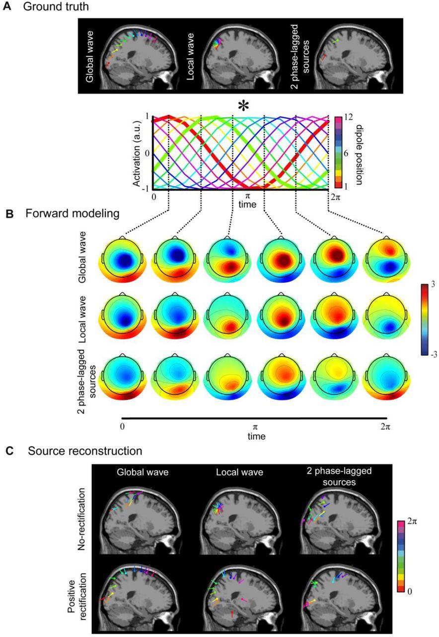 The hidden spatial dimension of alpha: 10 Hz perceptual