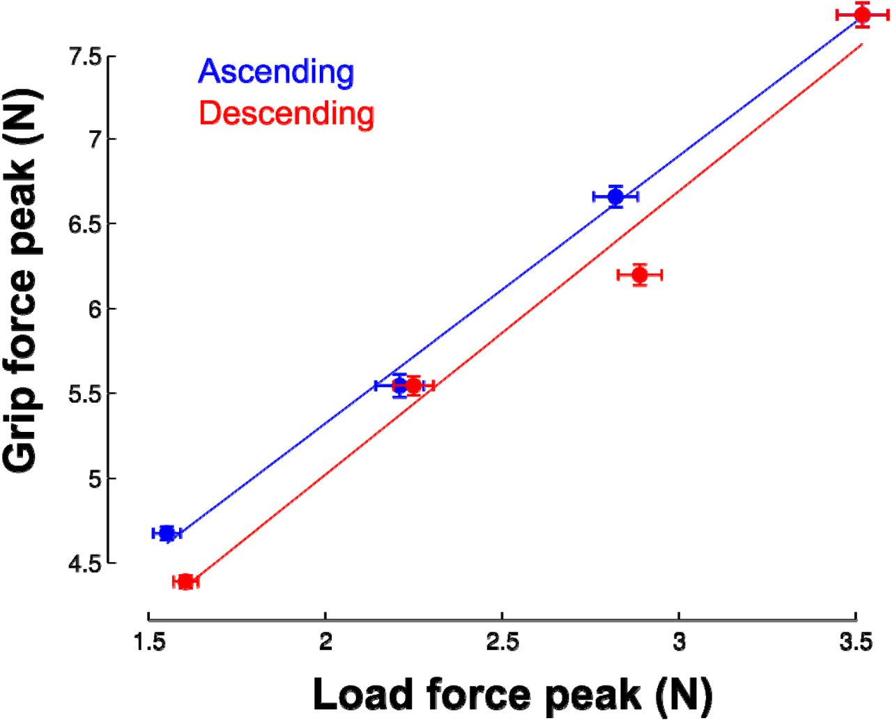 Grip force adjustments reflect prediction of dynamic