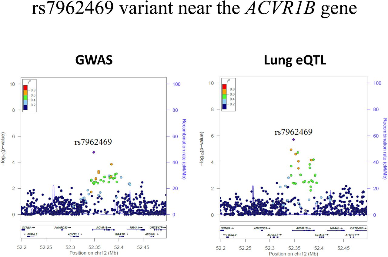 Integrative genomics analysis identifies ACVR1B as a candidate