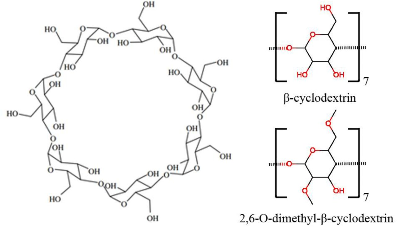 An MM and QM Study of Biomimetic Catalysis of Diels-Adler