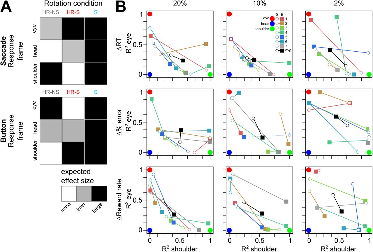 Effector-dependent response deterioration by stochastic